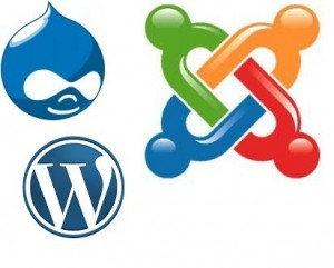 Content Management Systems (CMS) - WordPress, Drupal, Joomla